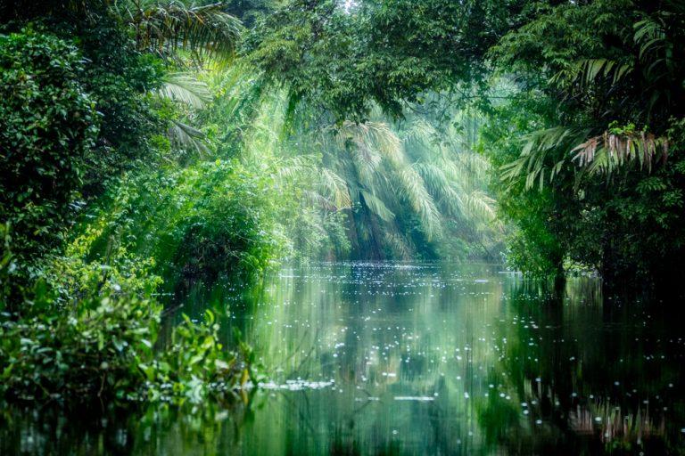 雨×川ってこんなにオシャレ!アーティスティックな雨の日の河川スポット