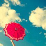 【前編】雨に咲く、「傘の花」の美しさ。雨の日を楽しくする「傘」の魅力を伝えたい。