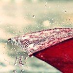 【後編】雨に咲く、「傘の花」の美しさ。 雨の日にしか見ることができない、人の表情を楽しみたい。
