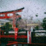 雨だからこそ美しい死ぬまでに見たい雨の景色ランキング国内編